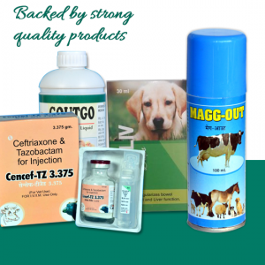Veterinary franchise company in Odisha