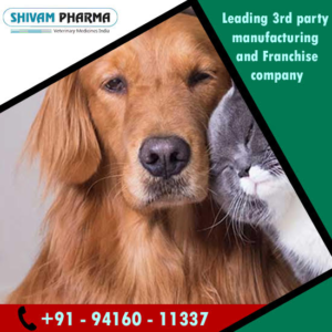 Veterinary PCD Franchise